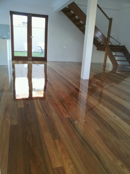 SPOTTED GUM-flooring color