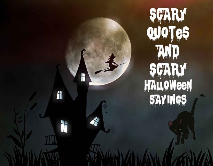 Scary Quotes And Scary Halloween Sayings Halloween Is The Time Of Changing  Of Seasons And Some