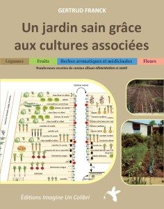 un jardin sain grace aux cultures associées