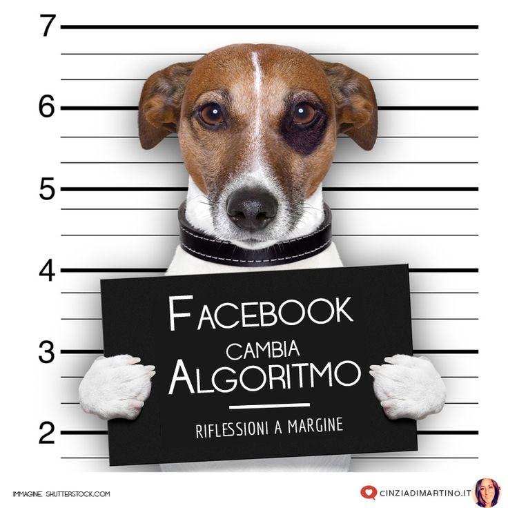 Facebook cambia e noi con lui. Ma non ci avrà investito di troppe responsabilità? Le mie riflessioni a margine.