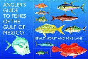 where I live: Mexico Brought, Fish Kayaks, Sea Kayaks, Fish Galveston, Fish Sea, Fish Identification, Gulf Of Mexico, Fishing Memories, Fish Memories