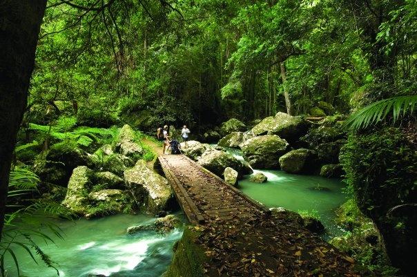 Mary Cairnscross Park - Sunshine Coast - Australia