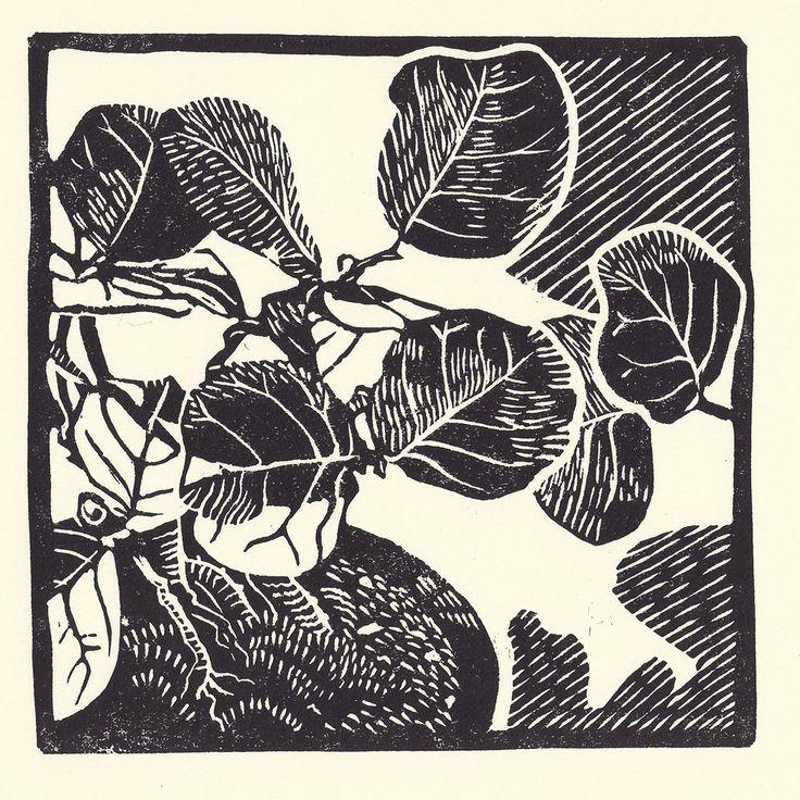 Sea Grape Bonsai linocut artist print. via Etsy.
