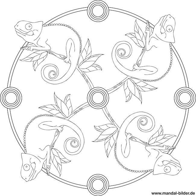 Mandala Chamaleon Zum Kostenlosen Ausdrucken Tiere Zum Ausmalen Ausmalen Fur Kinder Chamaleon