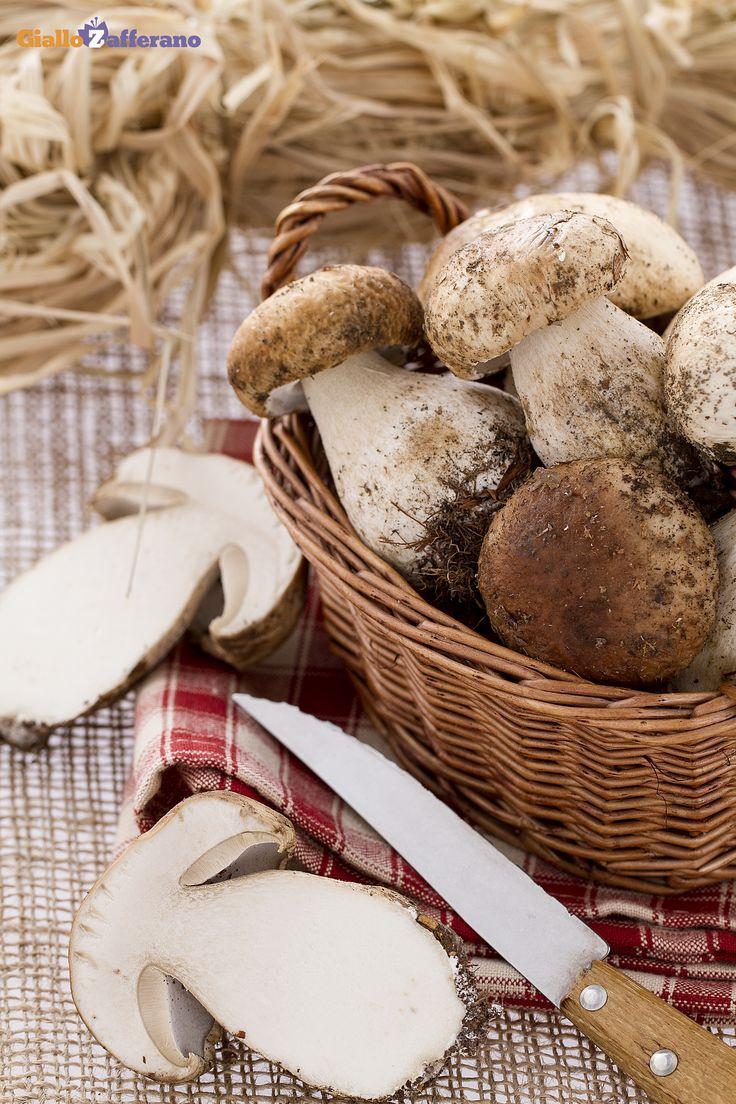 Come pulire i #FUNGHI PORCINI (how to clean porcini mushrooms), l'ingrediente ideale per le ricette autunnali! #scuoladicucina #GialloZafferano