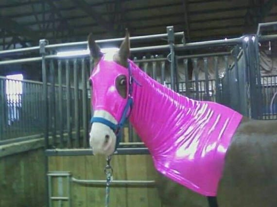 Sleazy Sleepwear hood--Pick color and size