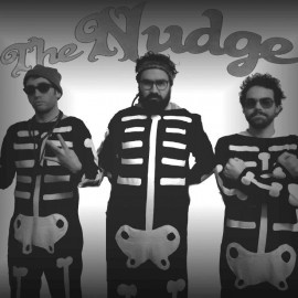 The Nudge @ Rhythm and Alps 2012  http://www.rhythmandalps.co.nz