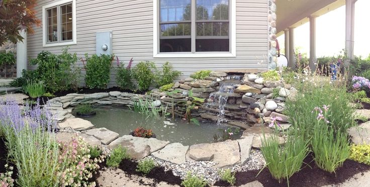 Build the Perfect Pond - Laguna Ponds