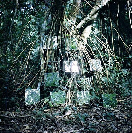 Robert Smithson, Yucatan mirror displacements (1-9) (1969)