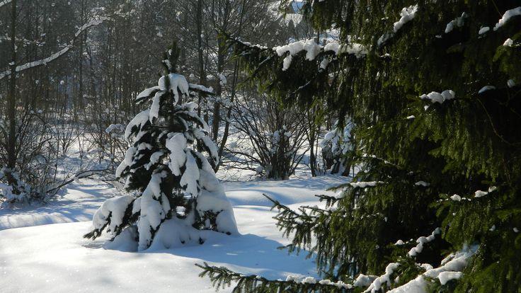 Na #Slovensko sa vráti #zima. Cez #víkend sa ochladí a platia mnohé #výstrahy http://my.slbeu.eu/zima03 #SHMU #poľadovica #sneh #sneženie #vietor #víchrica