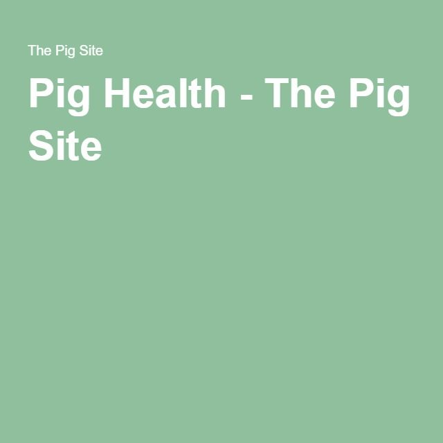Pig Health - The Pig Site - browse over 600 pages of information on managing the health aspects of a pig or hog farm.
