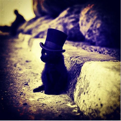 It's a cat with a top hat.