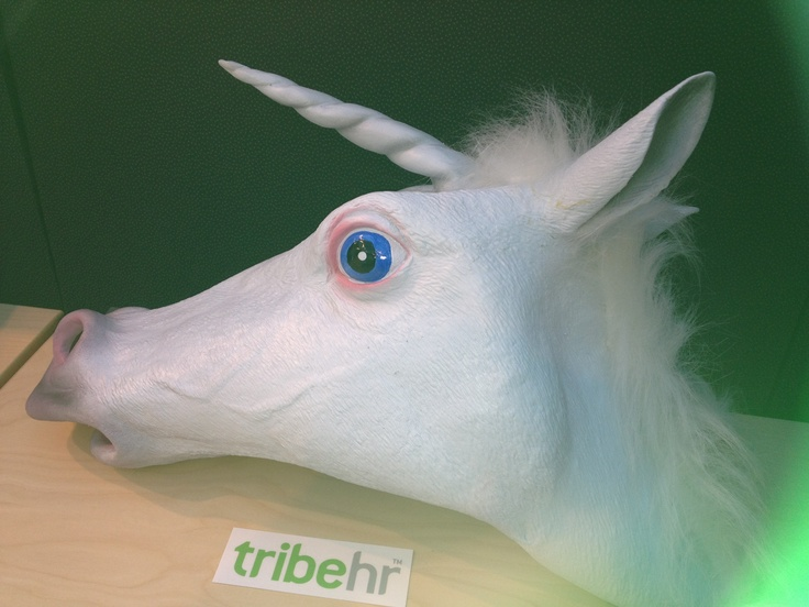 Unicorn @ TribeHR Office in Waltham MA. Because why not?