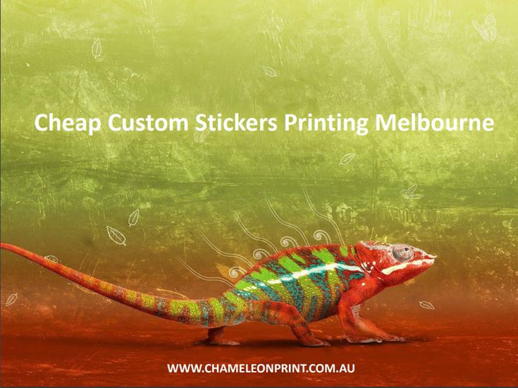 Because of our flexibility in Sticker Printing Australia, we are able to offer competitive prices and turnarounds on all types.  Whether it's a sticker for your Cheap Custom Stickers Printing Melbourne, or a label for a supermarket shelf, we are able to produce it for you in small or large print runs.