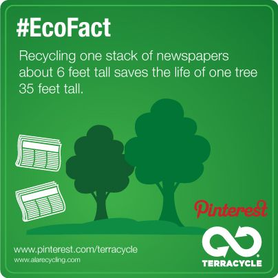 essays on recycling and the environment This essay will try to demonstrate three main benefits of recycling including its important role in economies, environment and energy-saving recycling generates substantial economic benefits and it has made a vital contribution to job creation and economic development.