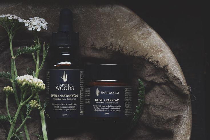 antioxidant serum | yarrow | daily rituals | Spiritwoods Botanicals | Australian made