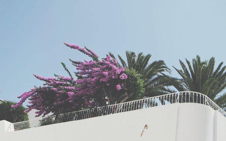 Tunisia - random place