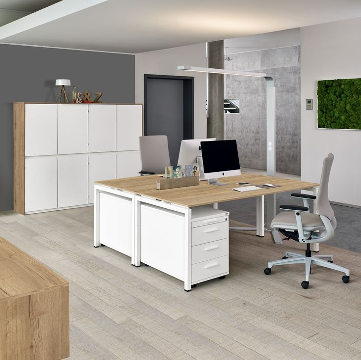Schreibtisch: Trento – moderner Schreibtisch Trento von Febrü mit weißem Gestell. die Tischplatte ist aus modernem Holz Dekor Eiche Montana.