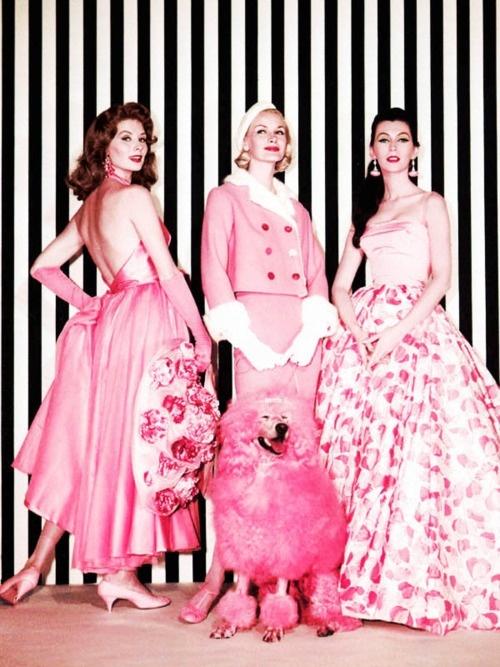 ♥: Suzy Parker, Pink Poodle, Vintage Pink, Vintage Fashion, Pink Ladies, Funny Faces, Funnies, Sunny Harnett, Pink Fashion
