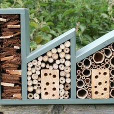 Double Insect Factory - perfect for bees and other insects.