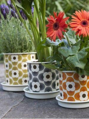 Orla Kiely Plant Pot