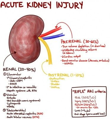 Acute Kidney Injury The RIFLE criteria define the relative damage to the kidney and the outcome. RIF = Severity in terms of serum creatinine (sCr), glomerular filtration rate (GFR) and urine production. Though for simplicity I only included serum creatinine since that is most likely what you'll be looking at on initial blood work. LE = Outcome variables (temporary or permanent)