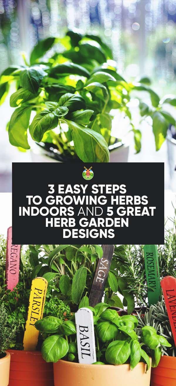 Best 25+ Growing herbs indoors ideas on Pinterest   Growing plants ...
