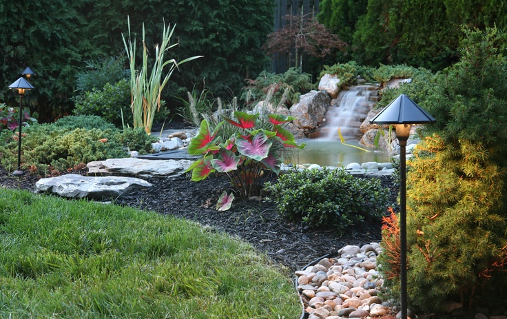 Simple pond and waterfall backyard look pinterest for Simple backyard ponds