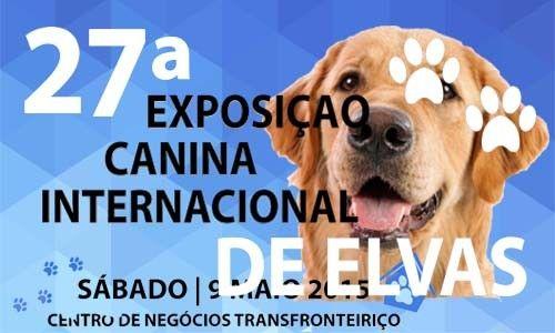 Centenas de cães e criadores em Elvas na 27ª Exposição Canina