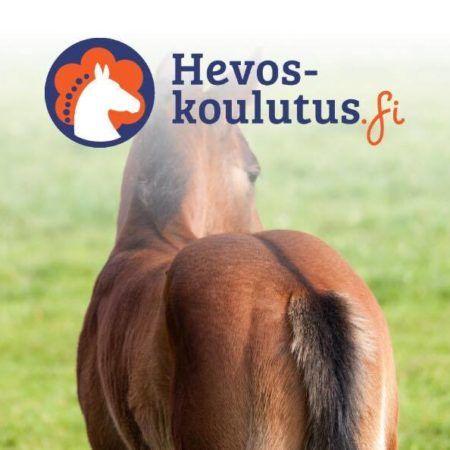 Hevosen selän biomekaniikka - verkkokurssi hevosen selän liikemekaniikasta! Valmennuksen avuksi!