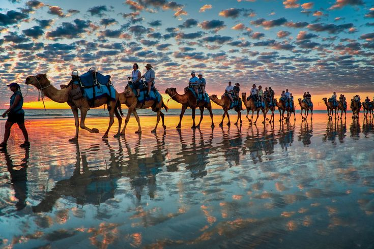 Cable Beach, Western Australia : 'Camels at Sunset'