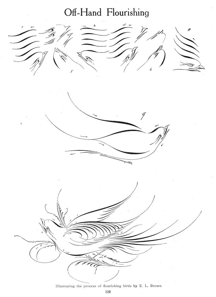 Calligraphy bird flourishing tutorials here http://www.iampeth.com/lessons_flourishing.php
