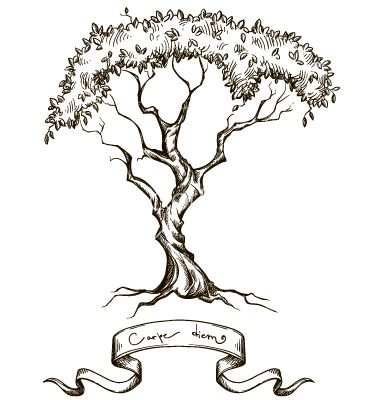 Old tree with ribbon banner hand drawn vector 1793517 - by kamenuka on VectorStock®