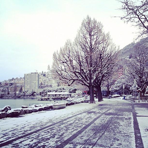 Montreux's lakeshore  #montreux #snow