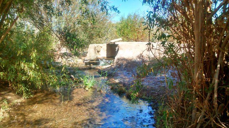AGRORIOJA: Agua en el desierto...