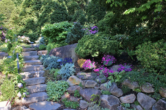 Rock garden hillside by via flickr rock for Hillside rock garden designs