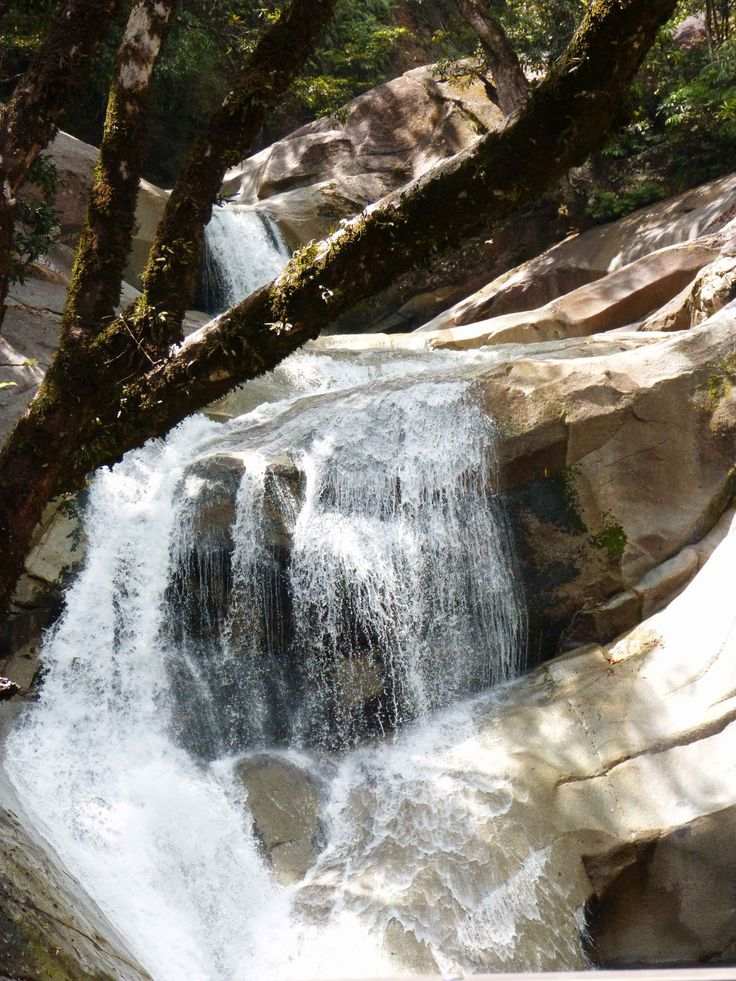 Josephine Falls near Cairns - 6 Must-See's when driving up to Cape Tribulation