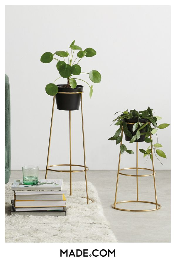 Ilex Set Of Two Tall Metal Plant Stands Brass With Black Pots Metal Plant Stand Plant Stand Indoor Plant Stand