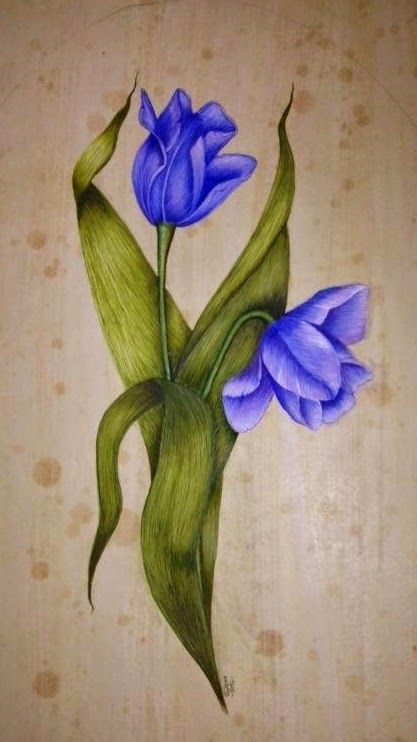https://www.pinterest.com/wilmavanh/vintage-flowers/