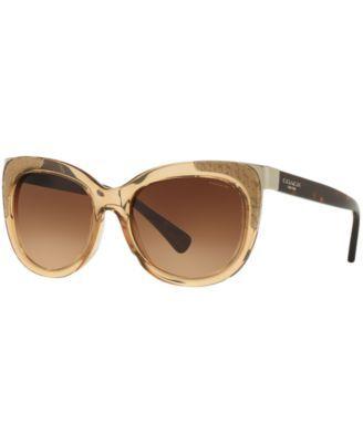 Coach Sunglasses, HC8171   macys.com