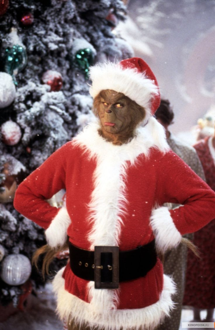 pictures of grinch   The-Grinch-how-the-grinch-stole-christmas-30805457-1000-1532.jpg