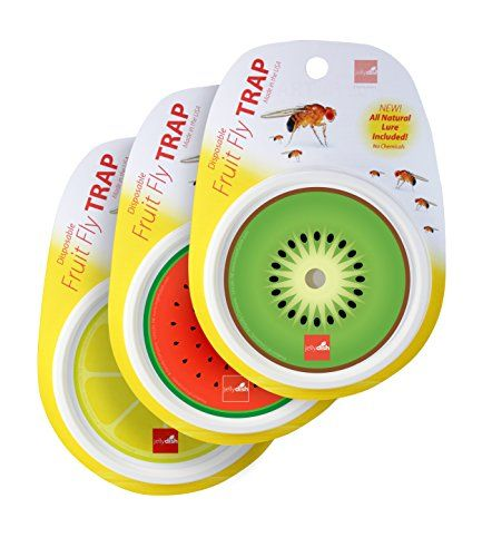 Disposable Fruit Fly Traps (3-Pack) - Lure Included - Con... https://www.amazon.com/dp/B01MQLIDYB/ref=cm_sw_r_pi_dp_x_ZYEPybAAA1TVQ