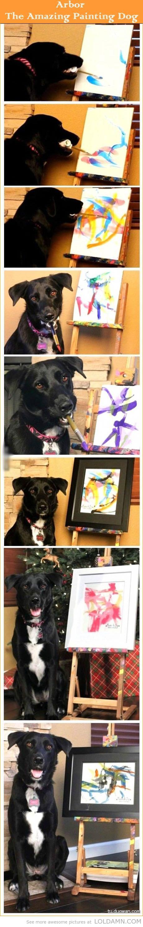 Paw-casso: Arbor the Amazing Painting Dog.