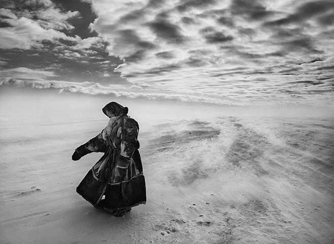 When temperatures fall sharply and fierce winds blow, the Nenets and their reindeer may spend several days in the same place until milder weather allows them to continue their migration. - Sebastião Salgado in Siberia - in pictures