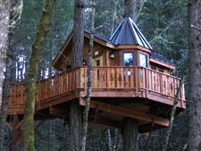 Tree House Hotel near Cave Junction, Oregon. Very cool