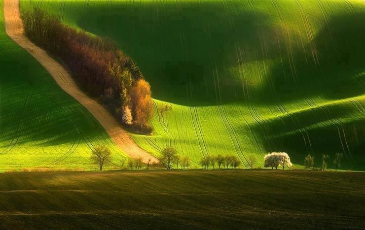 south moravia czech republic