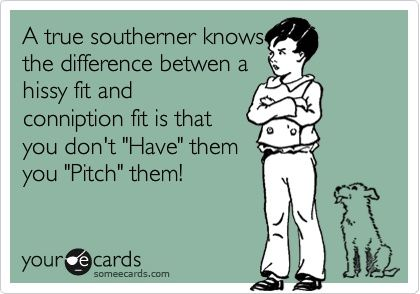 A true southerner knows the difference betwen a hissy fit and conniption fit is that you dont Have them you Pitch them!