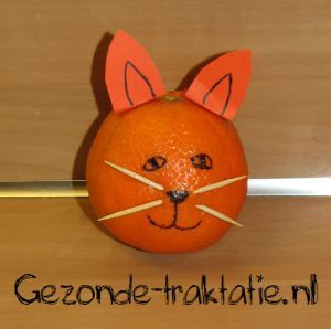 Fun Food Katze cat mandarin mandarine orange zahnstocher toothpicks animals tiere