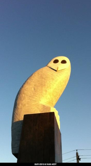 "The ""OWL"" That looks a bit phallic :)"