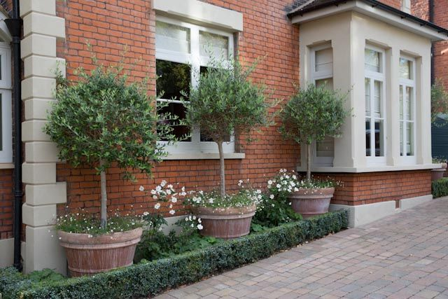 Small area of landscaping adds kerb appeal and softens the look of the brickwork